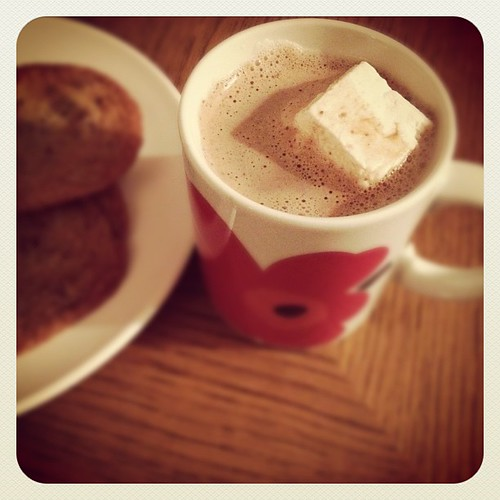Cocoa and cookies