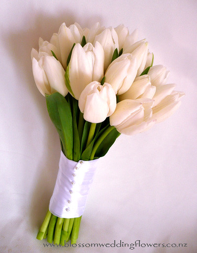 Bridal Bouquets Using Tulips : White tulip wedding bouquet a photo on flickriver