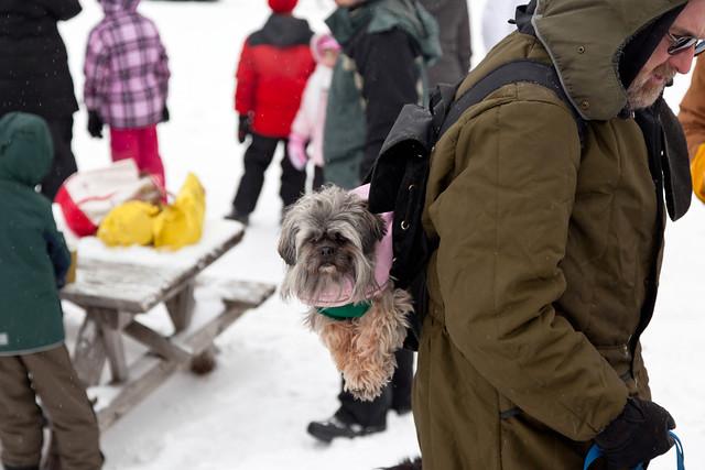 Grafton Lakes Winterfest 2012 - Grafton, NY - 2012, Jan - 17.jpg