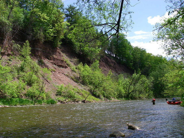 The Credit River Steelhead Section