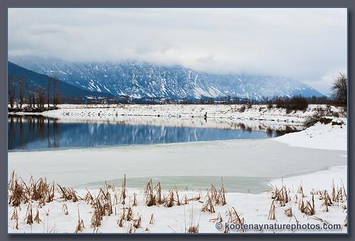 landscape bc creston summitcreek kootenayriver skimmerhorns