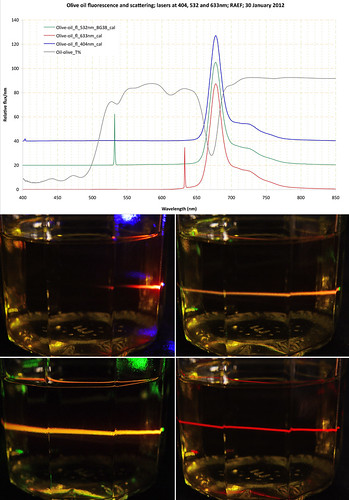 Olive oil fluorescence — 3 lasers