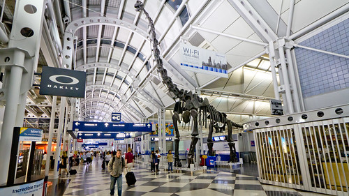 Chicago Airport - IMG_1510