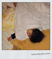 とらちゃん、午前の昼寝(2012/2/4)