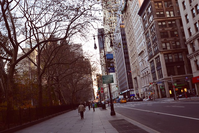 NYC 557