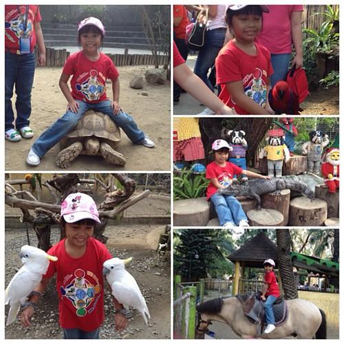 Bela had a blast @ Kinder Zoo. Maganda pala d2