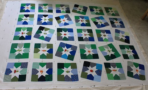Veggie Stars all pinned up