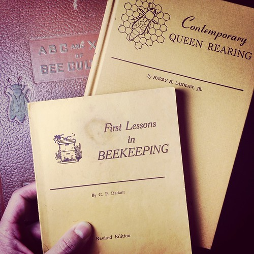 Reading up on queen bees