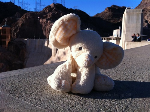 Baby Elephant at Hoover Dam