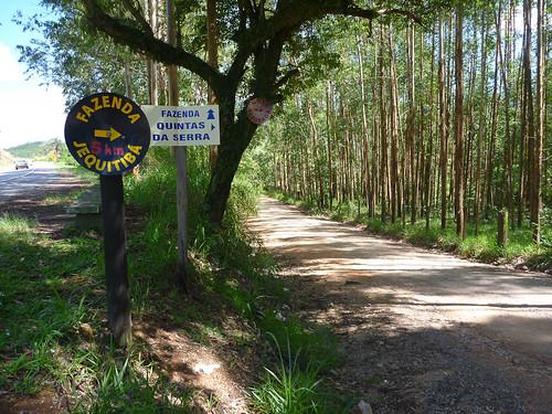 Entrada para trilha dos Macaquinhos - Serra Negra