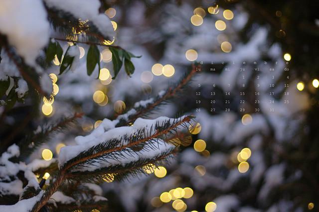 diciembre_esp_01_petit