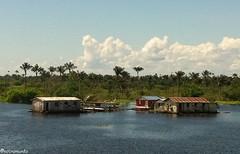 Travessia de balsa Rio Negro