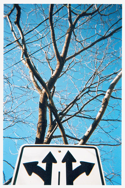sign directing trees