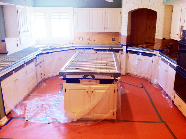 Zesty Nest Kitchen Reno Process