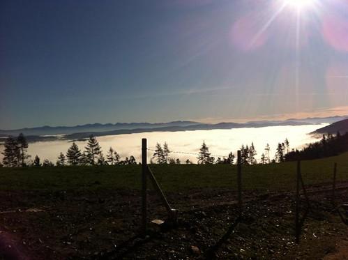 Niebla sobre masoucos