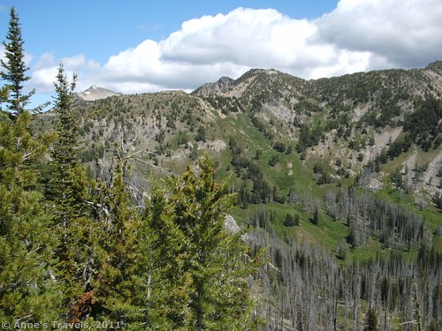 The view from where we turned around on the Summit Trail, Okanogan-Wenatchee National Forest, Washington