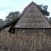 Log cabin and cornfield - Casa de madera y un maizal; Santa María Lachixio, Oaxaca, Mexico por Lon&Queta