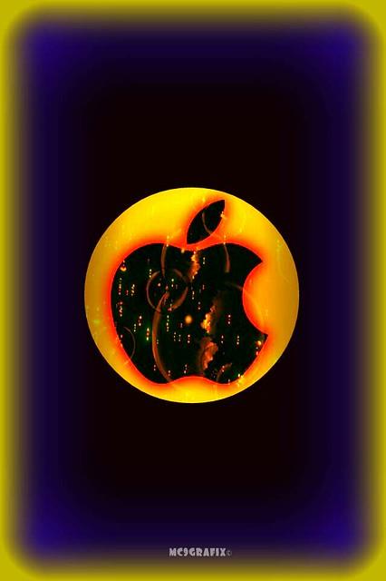 iphone wallpaper flickr photo sharing