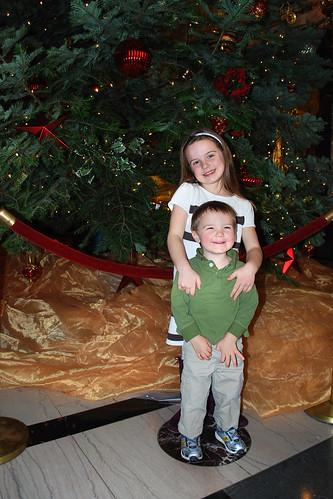 25 Foot Tall Christmas Tree