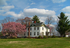 House with Spring Foliage, Lignum, Culpeper County, VA.