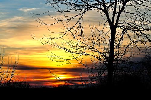 morning trees winter sky sun tree clouds sunrise nikon december connecticut newengland firstday northeast d5000 spoutheastern