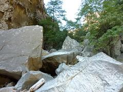 Sortie du canyon du Carciara : retour dans les blocs rocheux