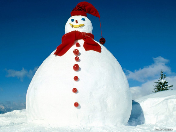fat-snowman-wallpapers_11980_1152x864