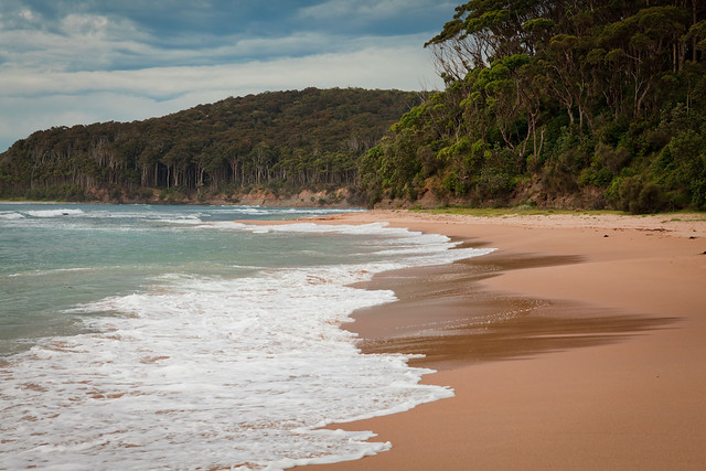 Pebbly Beach, Murramarang National Park, NSW, Australia
