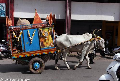 Bullock cart, Panjim