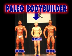 why we get fat – part 2, PaleoDietBodybuilder Omnivore Non Vegan Diet Cross…