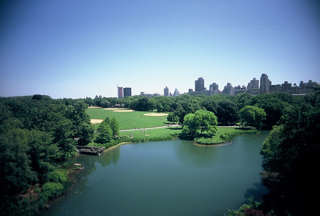 Summer in Central Park from Flickr via Wylio