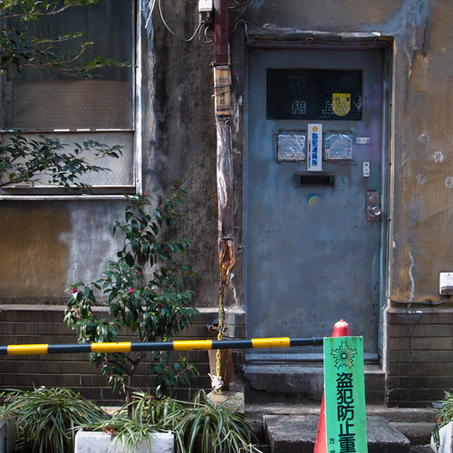 Limited Green in Akihabara with Door anf_