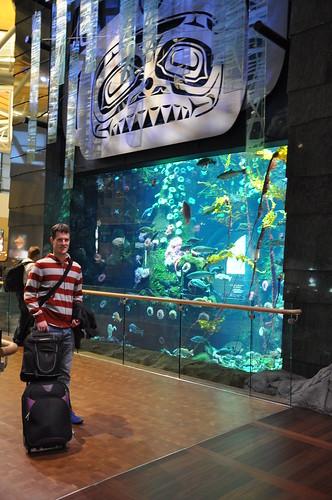 Vancouver airport departures lounge aquarium