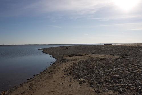Dead Shore