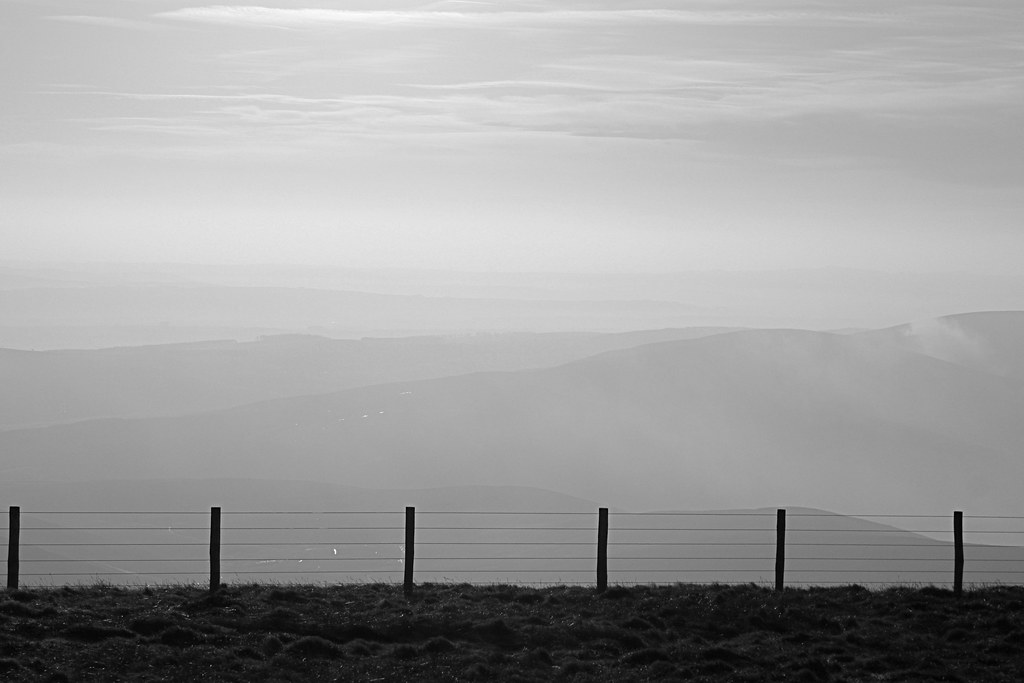 Mist beyond the fence
