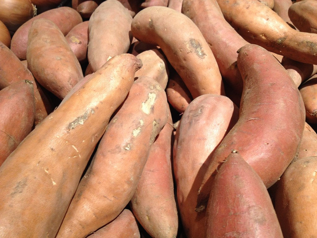 yams with salt cooked, boiled, drained, or baked