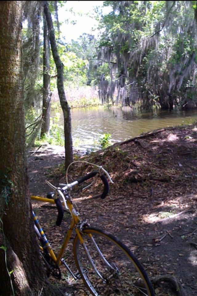 Dawes Galaxy bike by a lake full of alligators in Gainesville, FL
