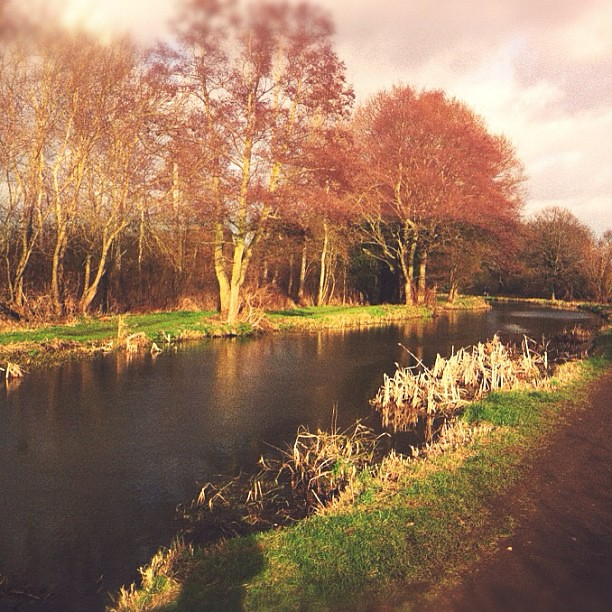 From Sunday's walk along the canal.