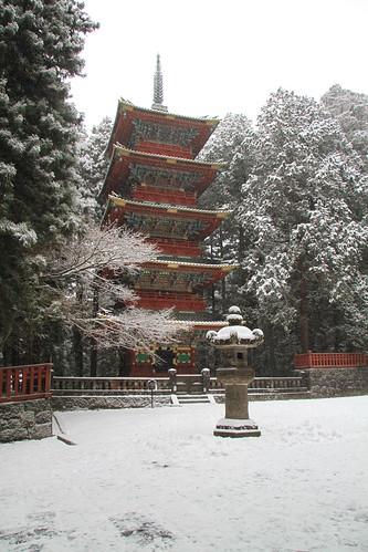 torre del rojo