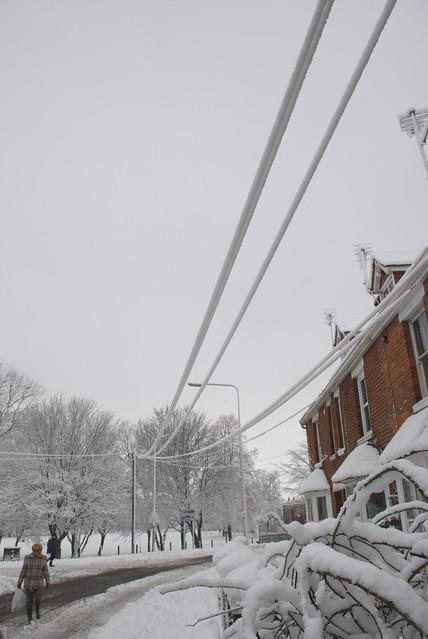 snow in rye DSC_3253_1