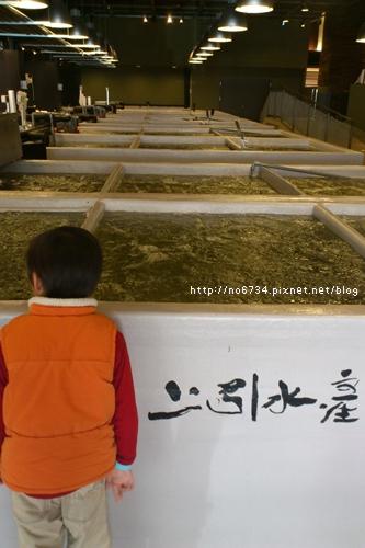 20120205_Seafood_0010 f