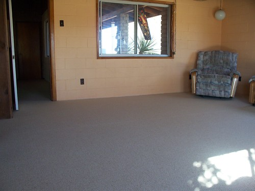 wool carpet 003