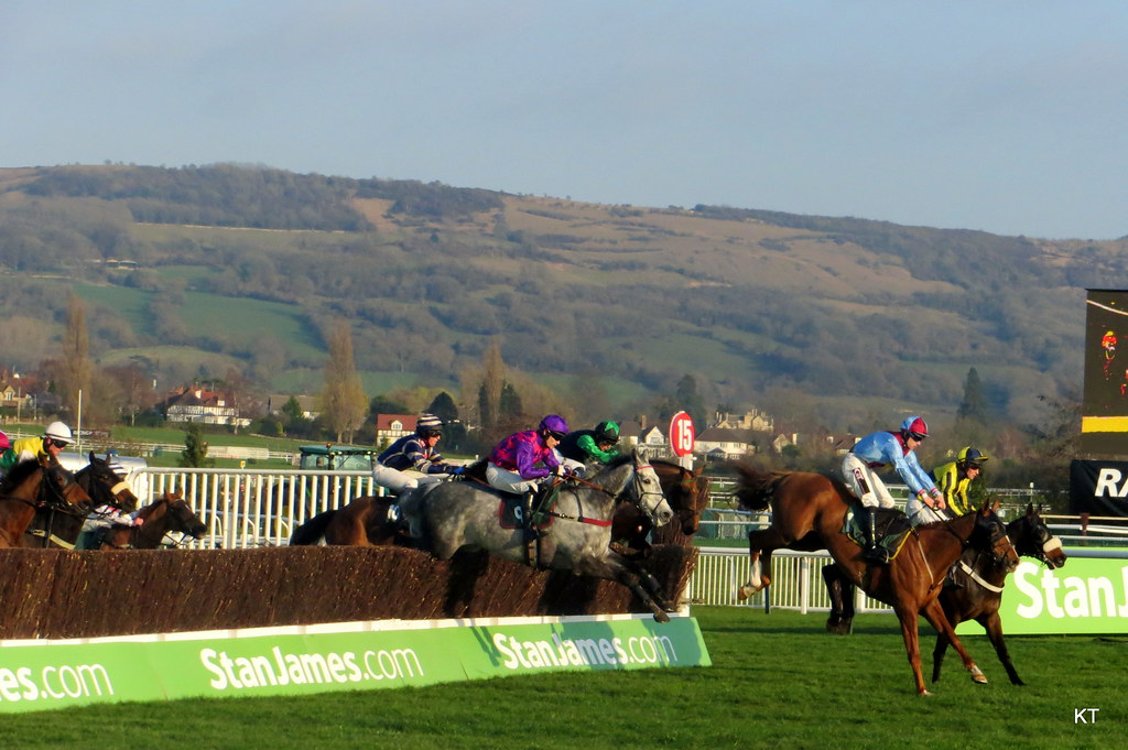 National Hunt Chase