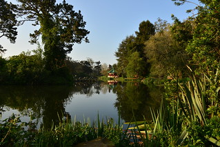 Stow Lake, Golden Gate Park, San Francisco