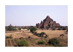 temples of Old Bagan