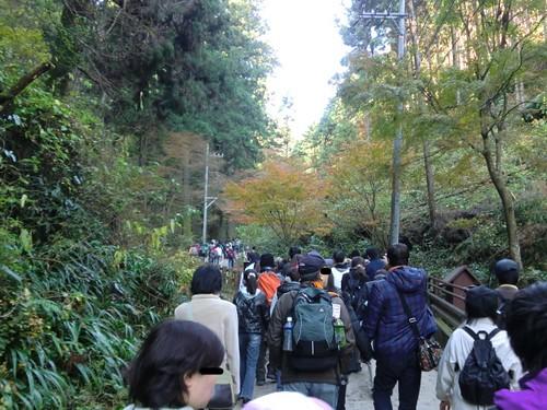 高尾山20111124-016