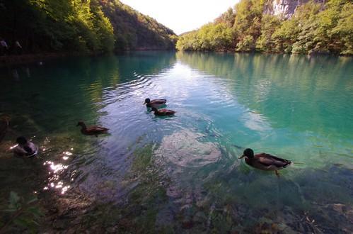 湖のある風景18