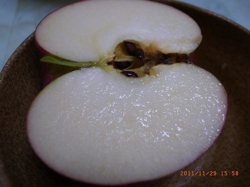 大紅榮蘋果,日本大紅榮蘋果