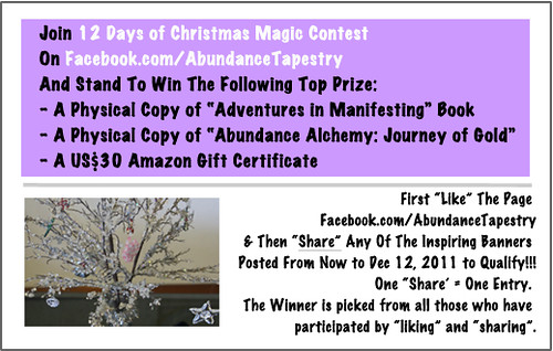 12 Days of Christmas Magic Facebook Contest