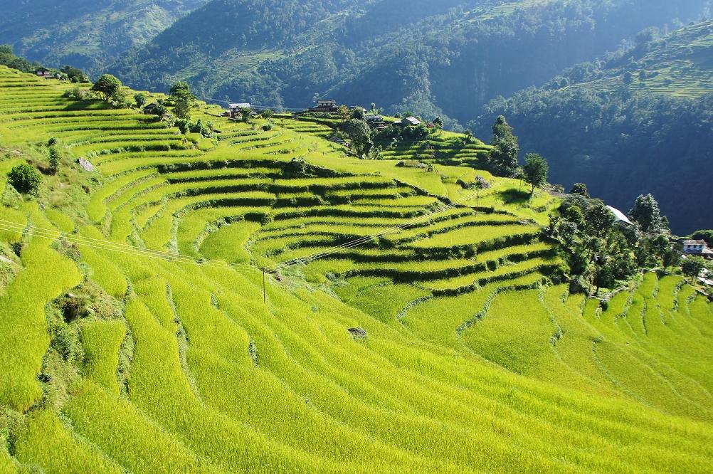 1006_Nepal_081